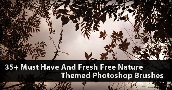 35+ Must Have And Fresh Free Nature Themed Photoshop Brushes