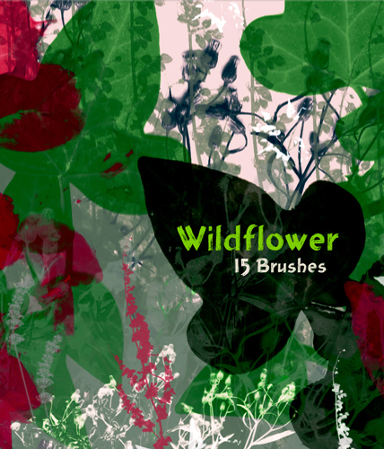 Wildflower_15_brushes_by_evashoots-d32d08l