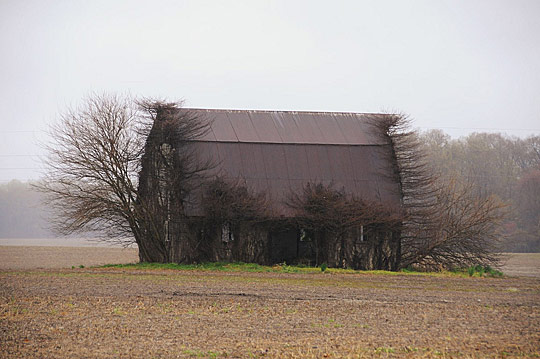 abandoned building 27