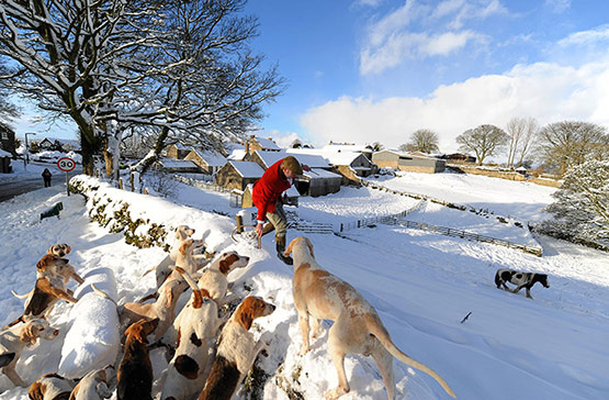 04 of 25, Attractive Snow Pictures of UK 2010