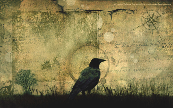 Crow_Wallpaper_by_Tiger_tyger