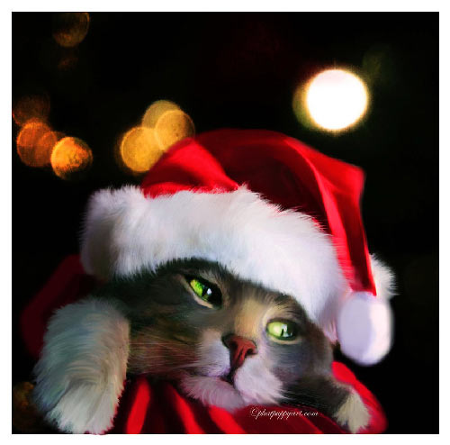 a purrfect christmas 40 Christmas Pictures To Get You into The Holiday Spirit