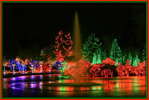 festival of lights 40 Christmas Pictures To Get You into The Holiday Spirit