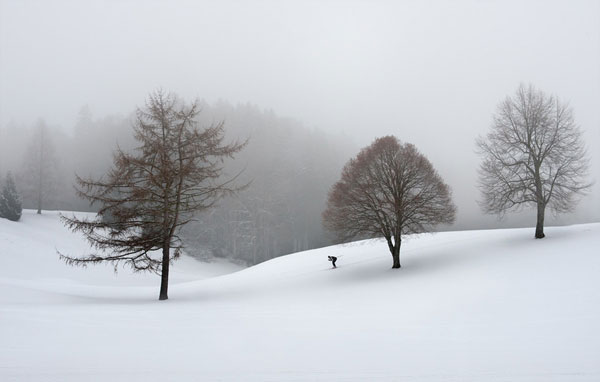 the loneliness of the cross-country skier