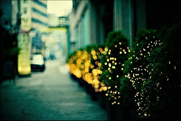 Outstanding-Examples-Of-Bokeh-Photography