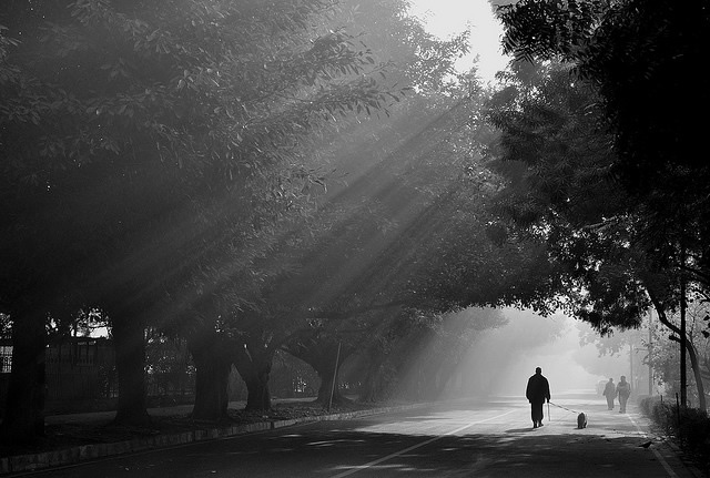 Light Beams Photography in Black and White