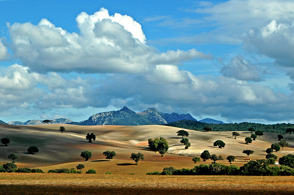 Andalusian landscape 25 Breathtaking Examples of Nature Photography