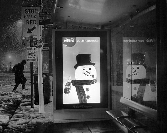 The Bus Stop is Laughing At You
