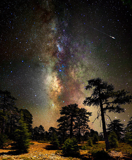 Deep space, deep in the forest