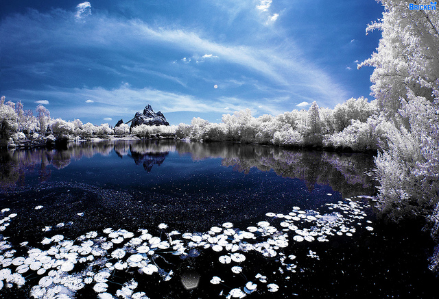 5913147541 7ddb1b5760 z1 45 Impressive Examples of Infrared Photography