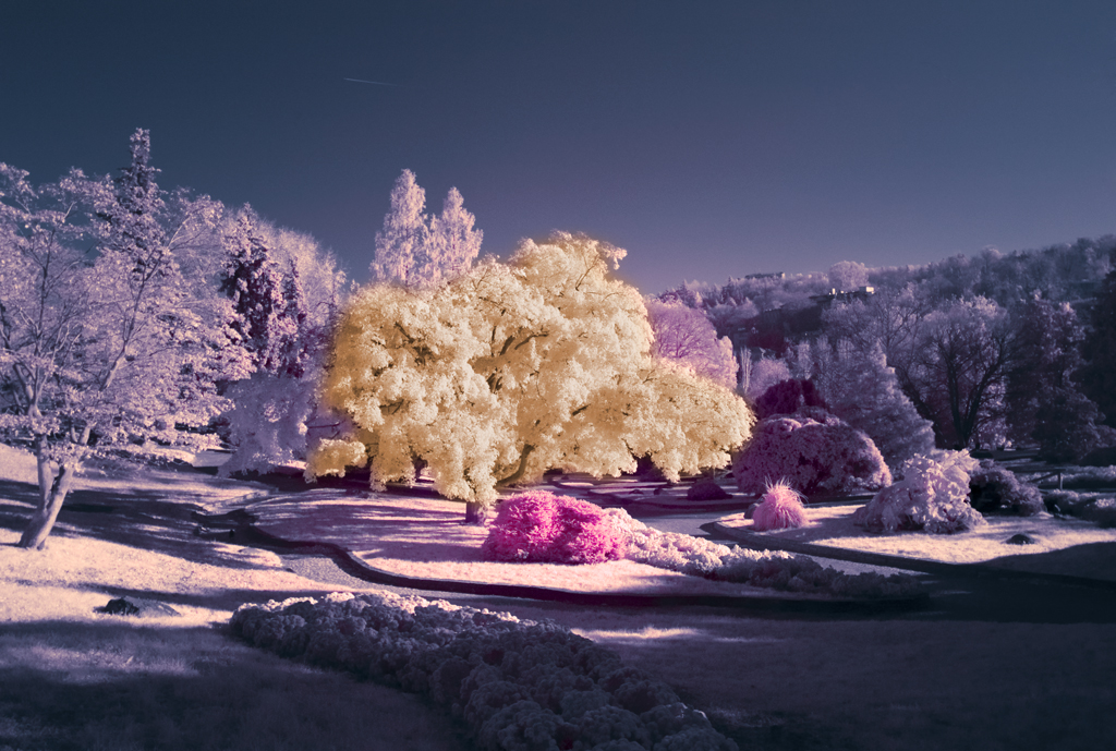 beautiful colours infrared photography11 45 Impressive Examples of Infrared Photography