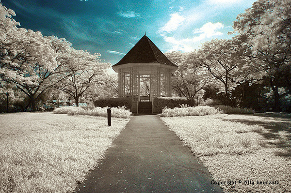 enhanced buzz 9058 1315243374 61 45 Impressive Examples of Infrared Photography