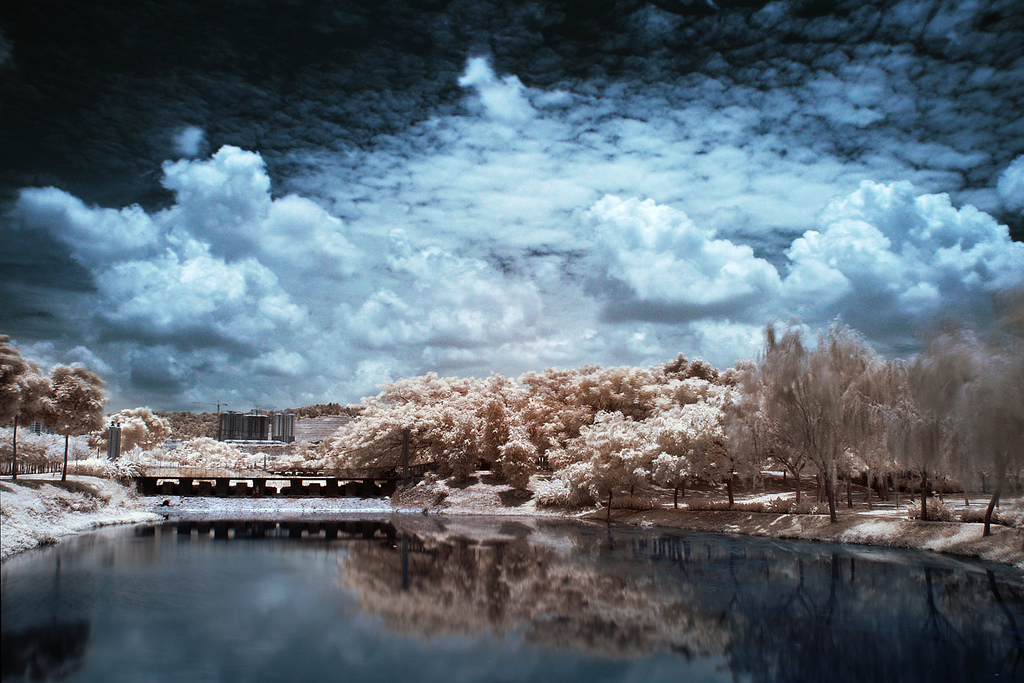 infrared photography a better day11 45 Impressive Examples of Infrared Photography