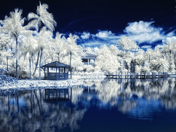 miami ir ii 45 Impressive Examples of Infrared Photography