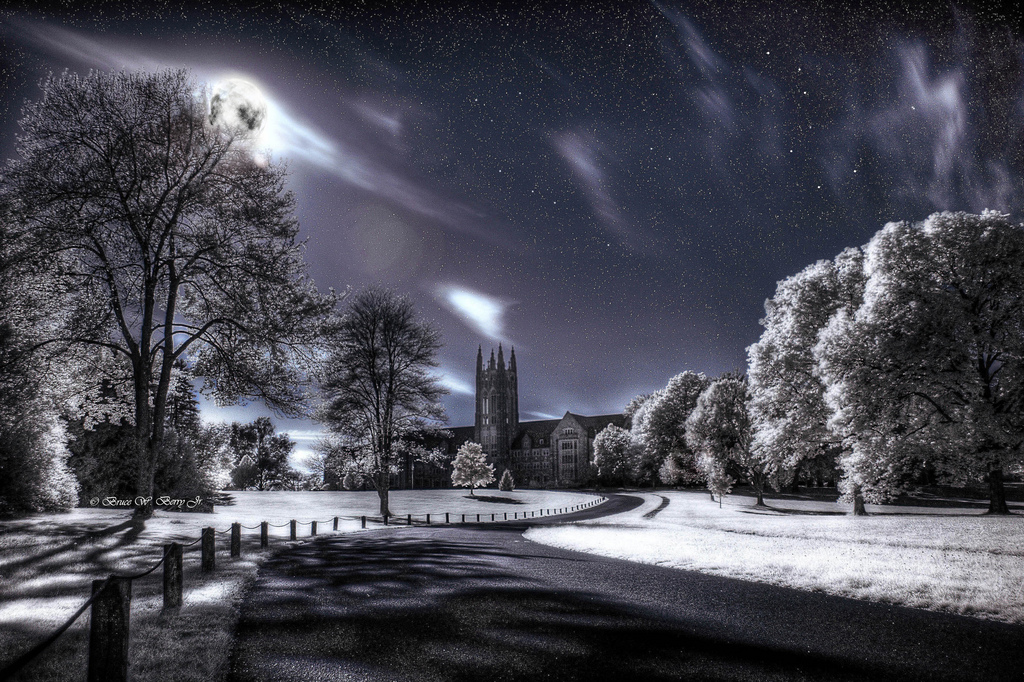 the winter solstice infrared photography11 45 Impressive Examples of Infrared Photography