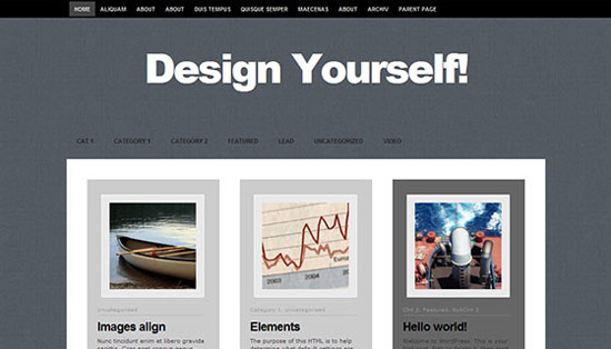 hight quality wp themes 29 Fresh and High Quality Free WordPress Themes Collection