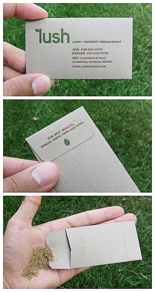Lush Lawn and Property Enhancement: Business card