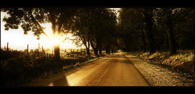 Reality Dream road pictures