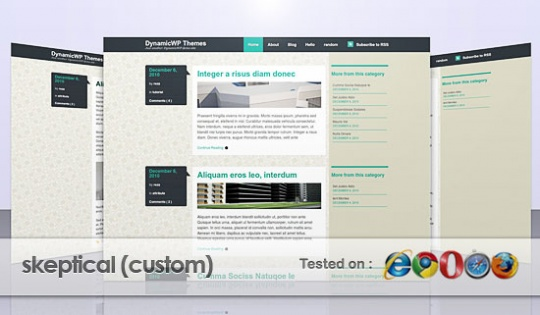 A Custom of Skeptical Theme from WooThemes by dynamicwp
