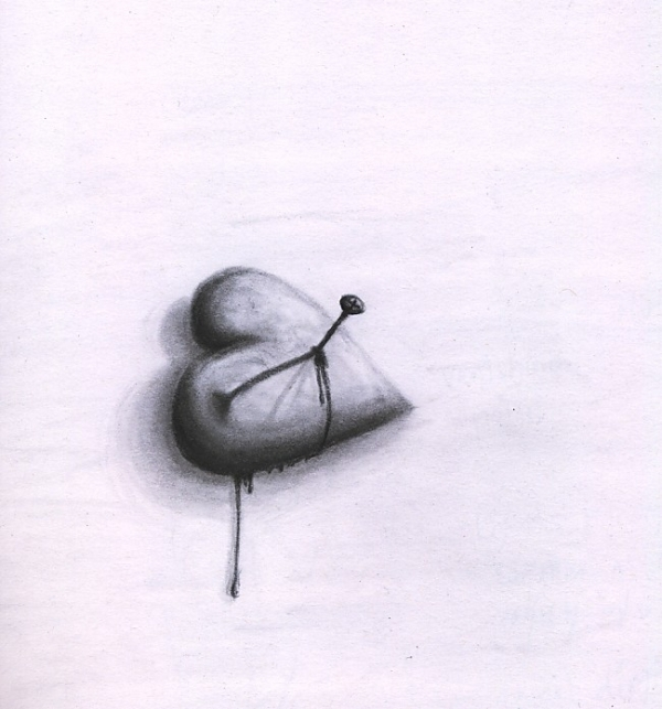 Heart Sketched