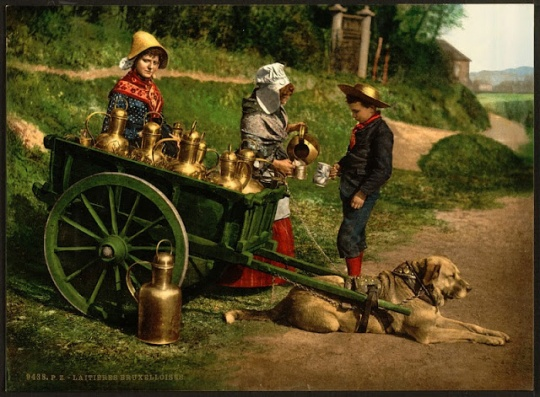 Photochroms of the 1890s