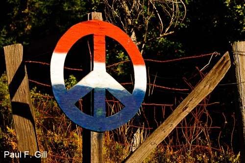 Peace Sign Humboldt County