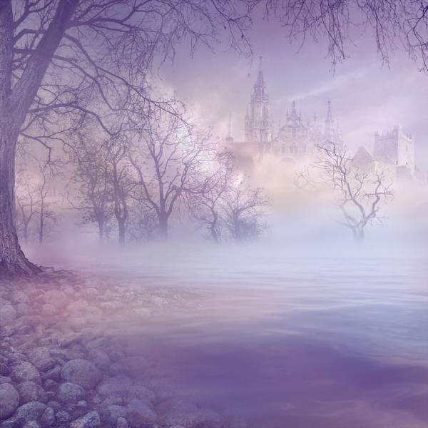 Fog Forest And Castle