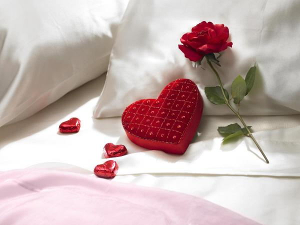 Heart Pillow with Red Rose