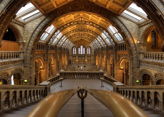 National History Museum London Architecture Photography