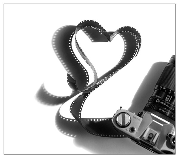 _for_the_love_of_film__by_fangedfem