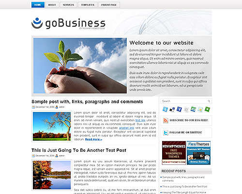 wp business theme gobusiness Clean and Clear Fresh WordPress Business Themes
