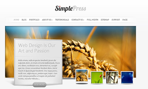 wp business theme simplepress Clean and Clear Fresh WordPress Business Themes