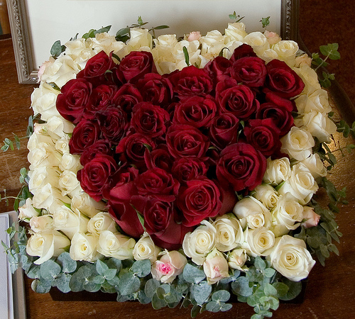 Red Heart Rose
