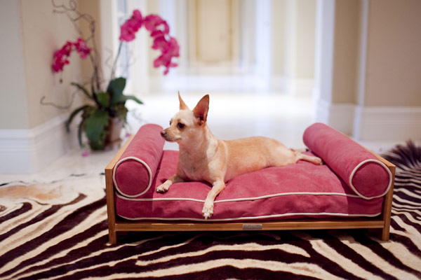 furniture for pets 2 Comfortable Furniture for Pampered Pets by Pet Lounge Studios