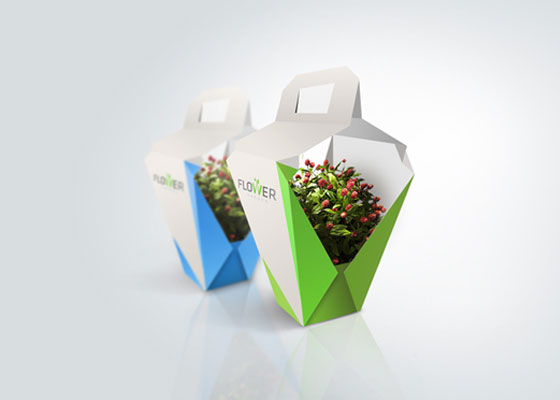 Creative Package Design for Inspirations
