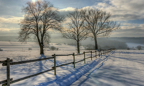 winter photography fence Chill Winter Photography