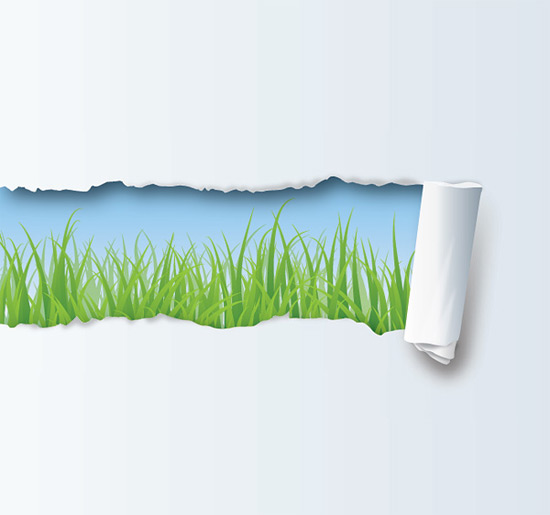 Hidden Nature - Vector Graphic by DryIcons