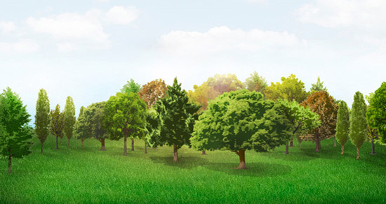 Trees Vector Collection Pack | Vector Objects