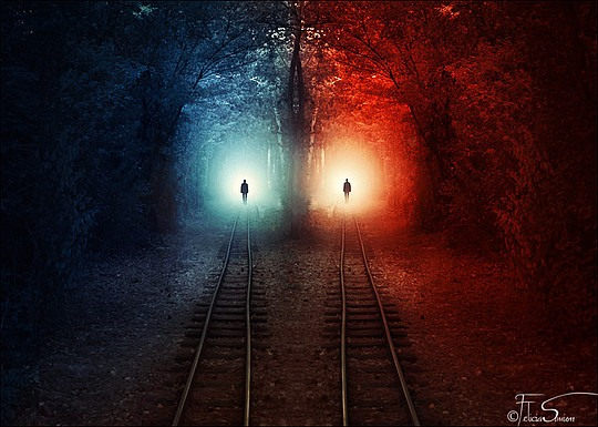 Photography by Felicia Simion