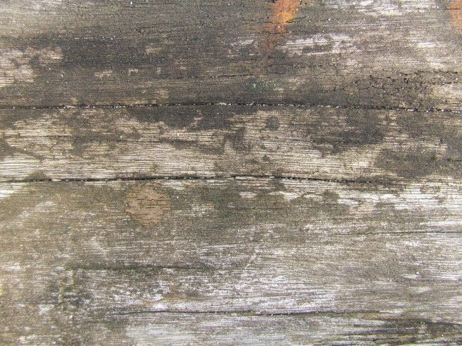 Old Wood by dazzle textures e1359620522795 200+ Free High Quality Grungy Dirty Wood Textures