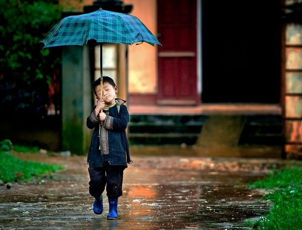 rain_photographs_and_pictures_2