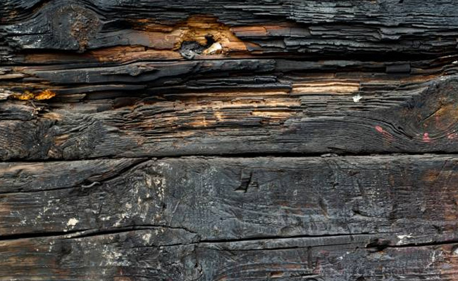 dirty wood 2 200+ Free High Quality Grungy Dirty Wood Textures