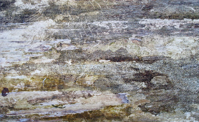 dirty wood 5 200+ Free High Quality Grungy Dirty Wood Textures