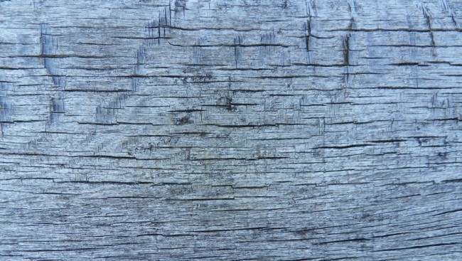wood texture 14 by carlbert d4tzgz5 e1359620226701 200+ Free High Quality Grungy Dirty Wood Textures