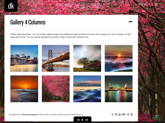 DK For Photography 25 New WordPress Themes for Photo Gallery