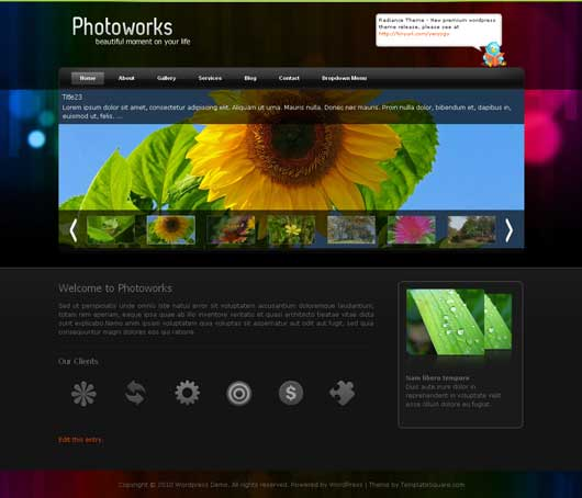 Photoworks 25 New WordPress Themes for Photo Gallery