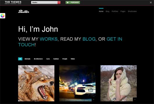 Shutter 25 New WordPress Themes for Photo Gallery