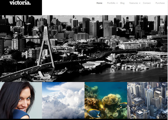 Victoria Portfolio Photography WordPress Theme