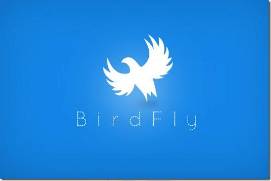 birdfly493x328 Latest Web2.0 Logo Designs for Designers
