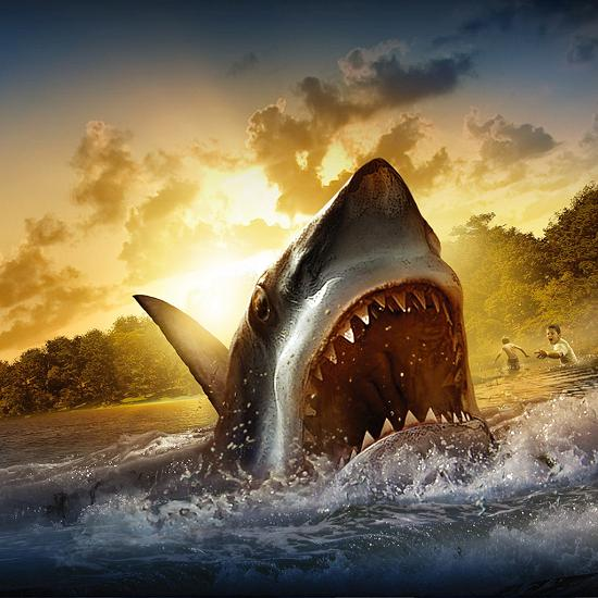 shark attack Fresh Wallpapers Collection of Apple iPad